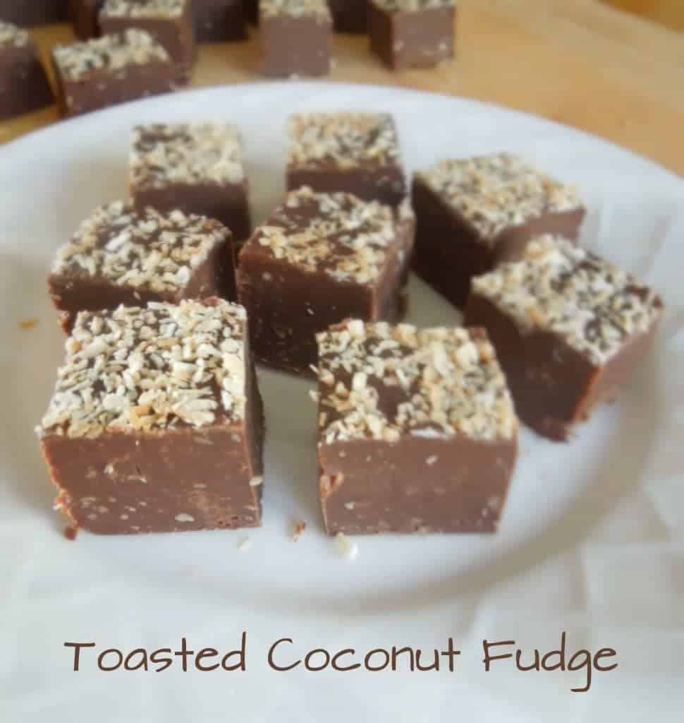 Toasted Coconut Fudge from What the Fork Food Blog