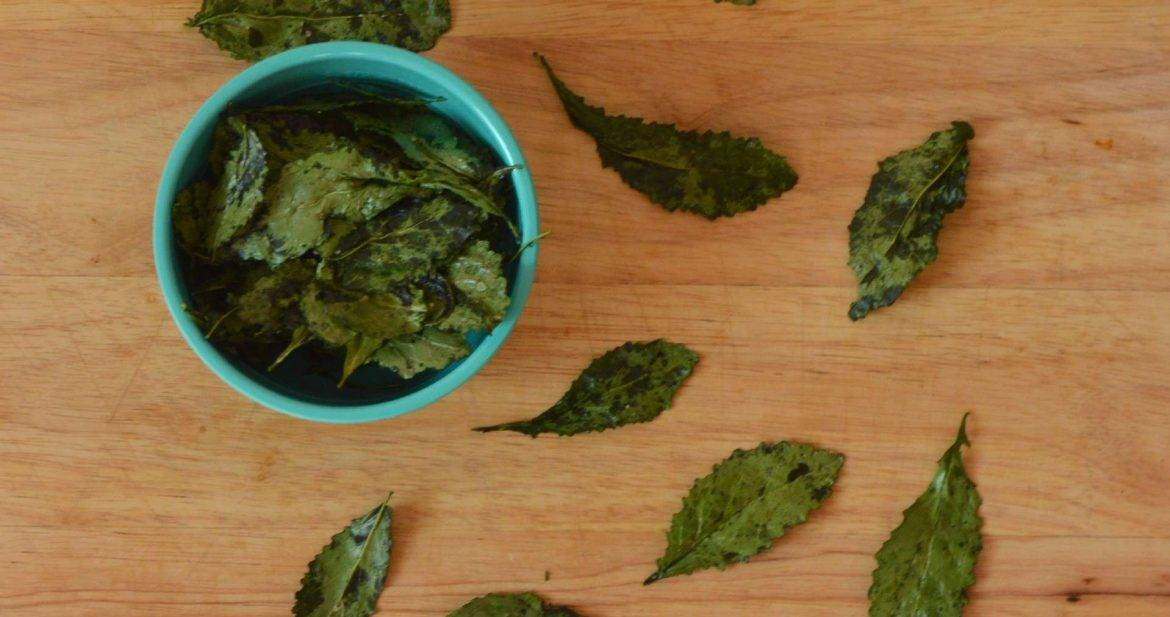 Baby Kale Chips from What The Fork Food Blog