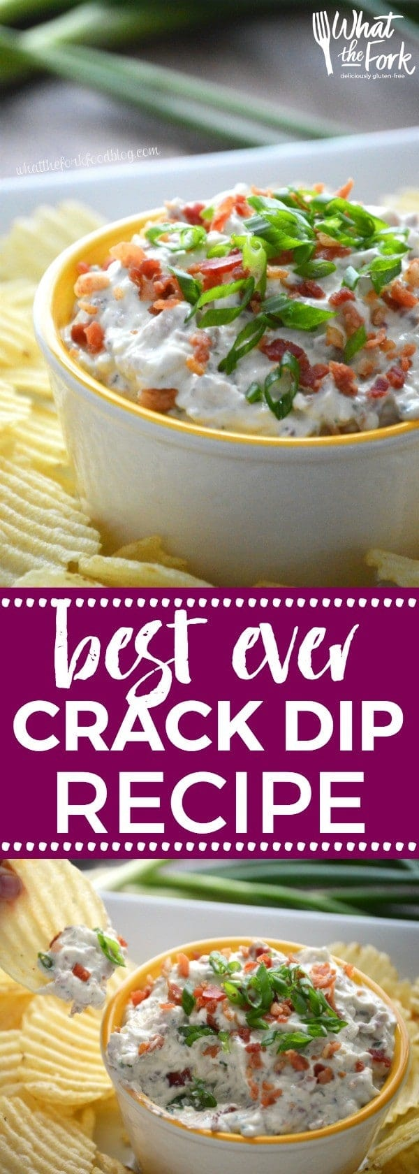 Super Easy Crack Dip - a sour cream based dip with ranch dip mix, cheese and bacon. Totally addicting! Crack Dip Pinterest recipe from @whattheforkblog | whattheforkfoodblog.com | crack dip cold | crack dip recipes | crack dip recipe | cheesy crack dip | crack dip with bacon | how to make crack dip | what is crack dip | award winning crack dip | game day recipes | gluten free appetizer recipes | gluten free dip recipes | easy dip recipes |