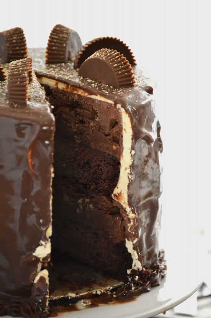 Chocolate Peanut Butter Cup Ice Cream Cake  from What The Fork Food Blog