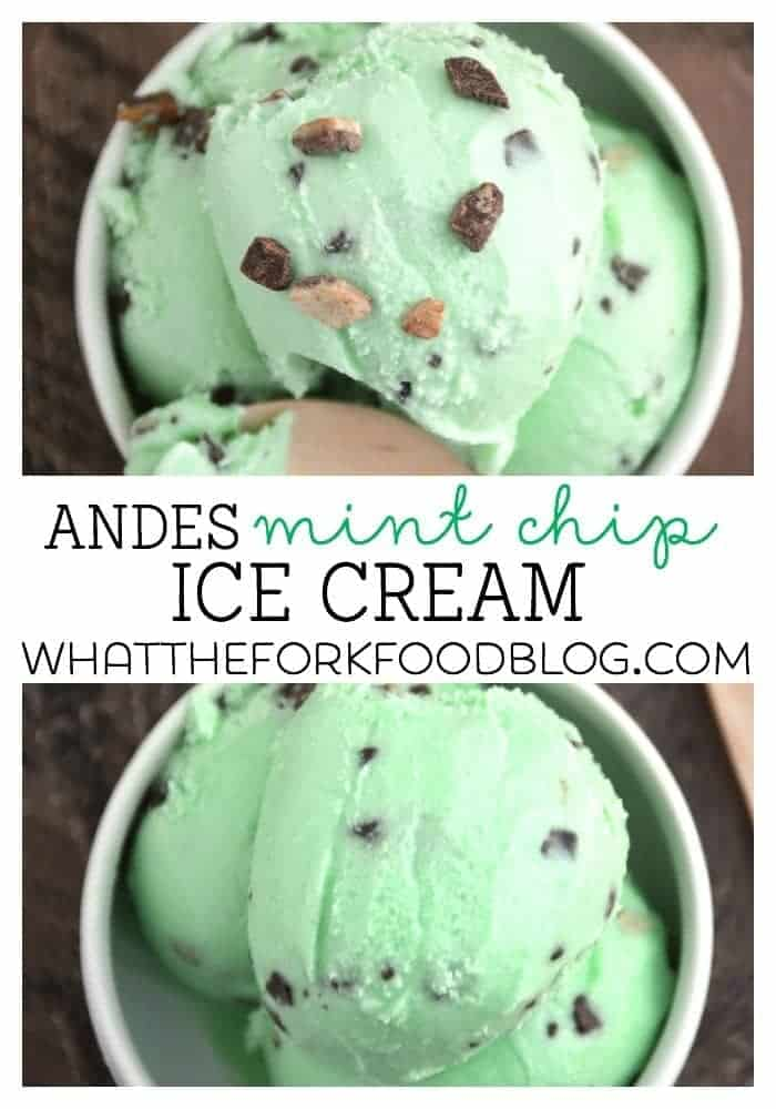 Andes Mint Chip Ice Cream from What The Fork Food Blog
