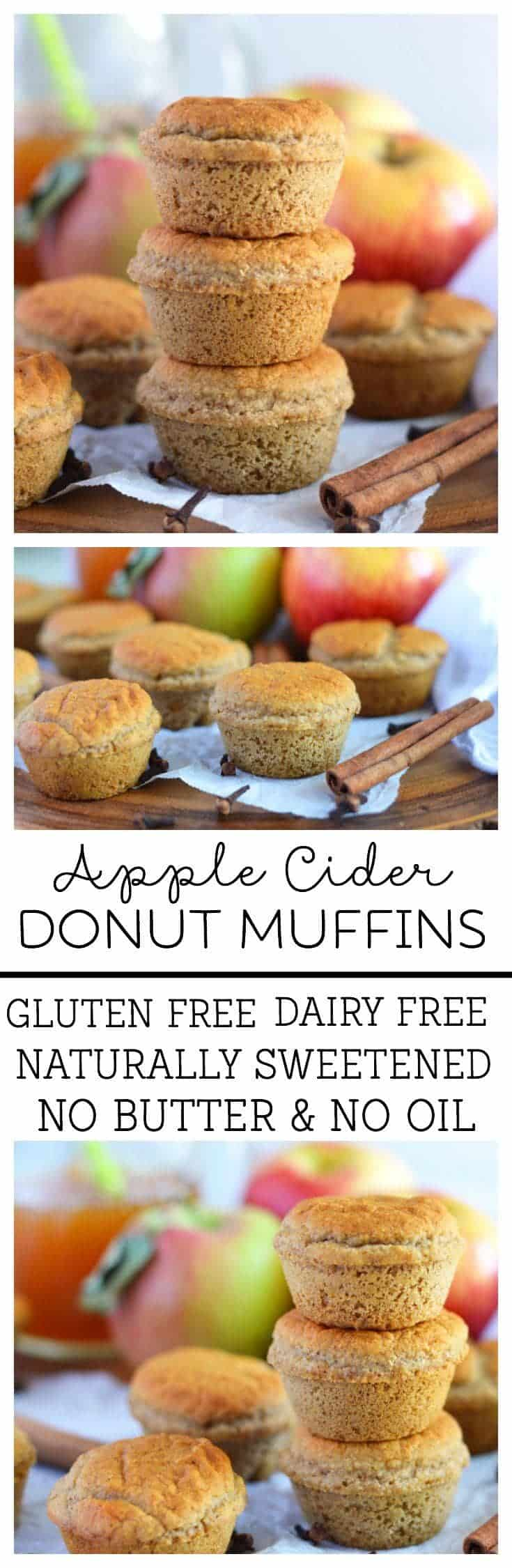 Apple Cider Donut Muffins (gluten free, dairy free, naturally sweetened, no butter, no oil) from What The Fork Food Blog | @WhatTheForkBlog | whattheforkfoodblog.com