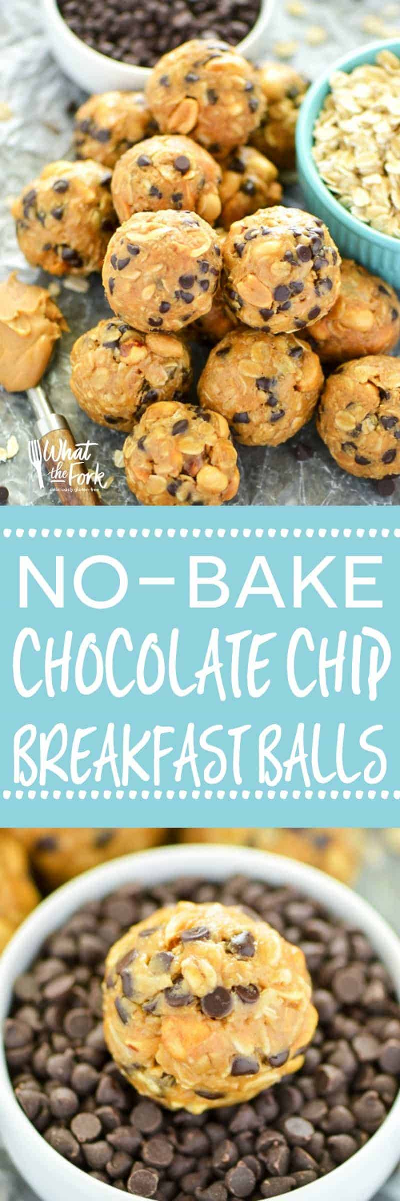 No-Bake Chocolate Chip Breakfast Balls - great for quick breakfasts for busy mornings and great for snacking! From the Easy Gluten Free cookbook. | @whattheforkblog | whattheforkfoodblog.com | gluten free breakfast recipes | gluten free snacks | no-bake recipes | energy bites | easy snack recipes | after-school snacks | peanut butter recipes | peanut butter balls | easy gluten free recipes | gluten free snack recipes